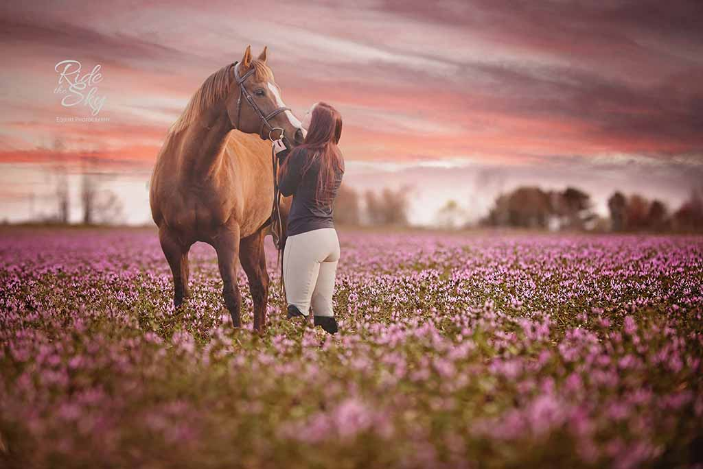 High School Senior Pictured with horse in flower field Chattanooga Tennesee