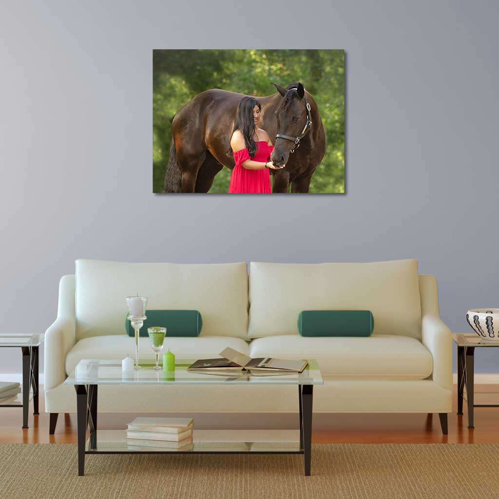 Image of a 30x40 canvas print over a couch