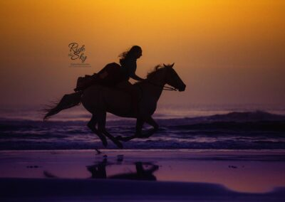Girl Galloping Horse on Beach in St. Augustine Florida by Ride the Sky Equine Photography