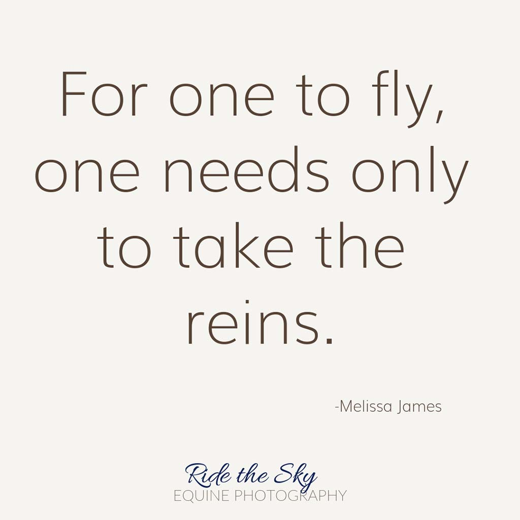 For one to fly, one needs only to take the reins quote
