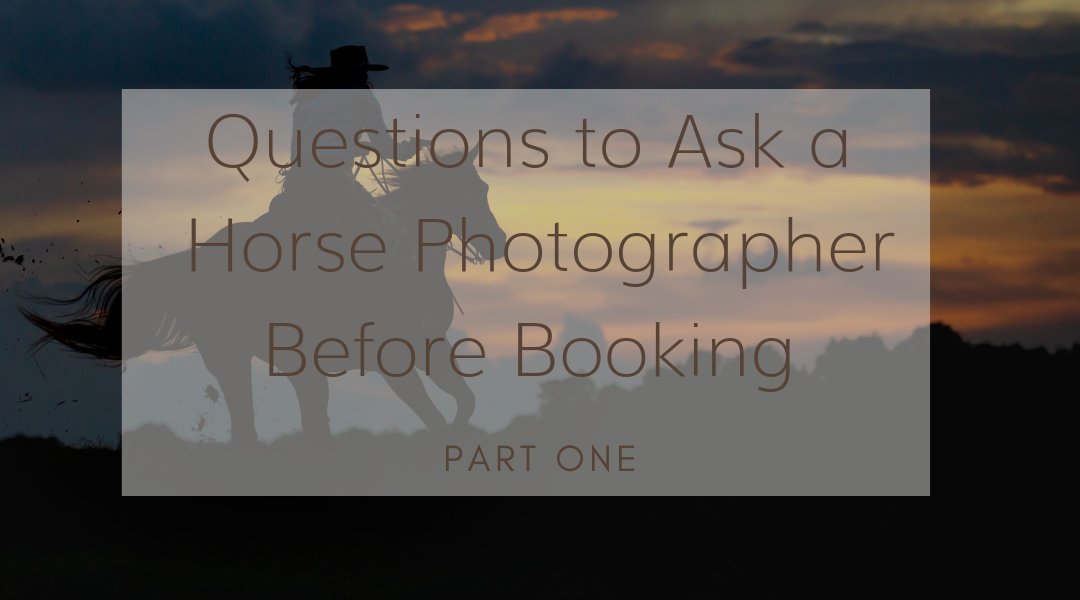 Questions to Ask A Horse Photographer Before Booking