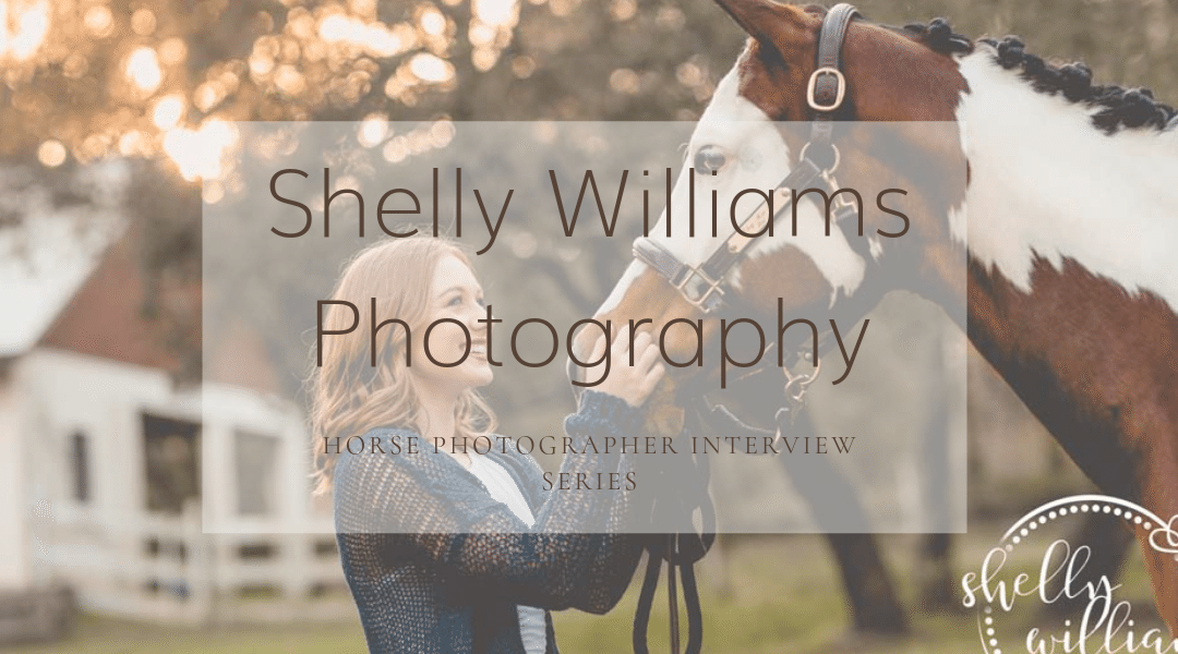 Shelly Williams Photography Feature Image