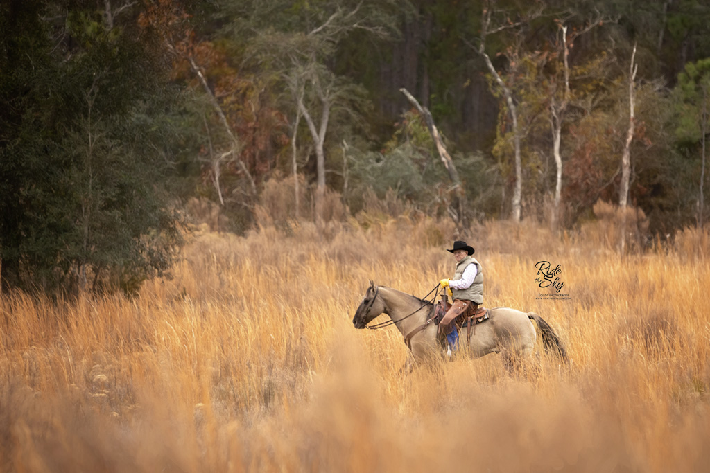 Florida Cracker Cowboy in the Field
