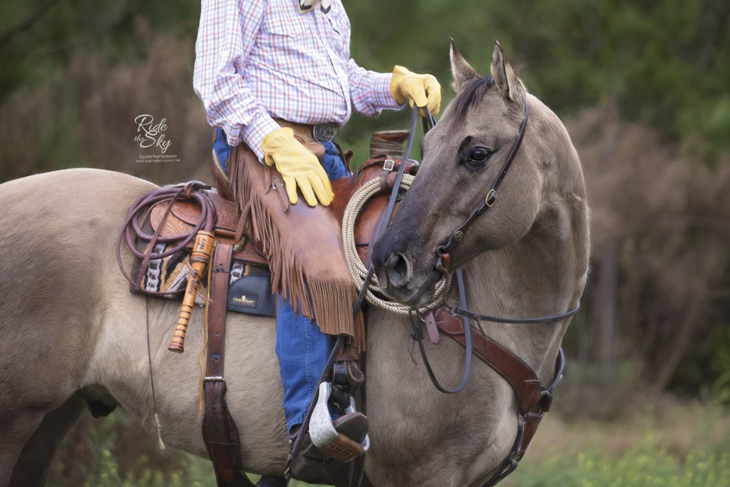 The bullwhip of the Florida Cracker Cowboy tied to the saddle