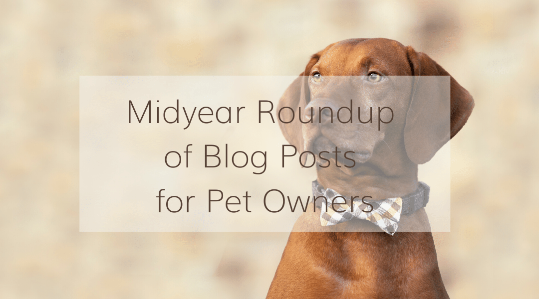 Midyear Roundup of Blog Posts for Pet Owners