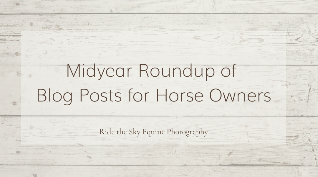 Midyear Roundup of Blog Posts for Horse Owners