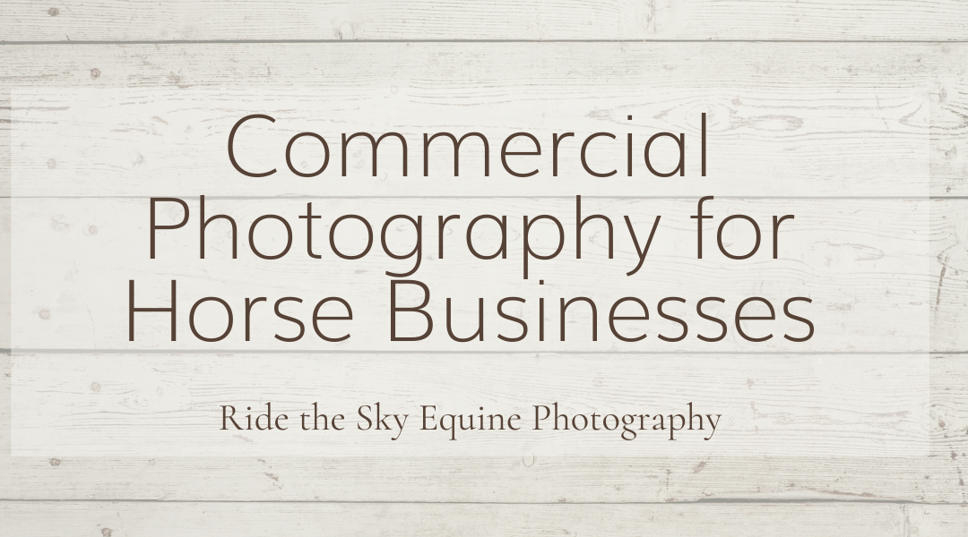 Commercial Photography for Horse Businesses Feature Image