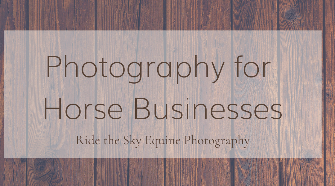 Photography for Horse Businesses