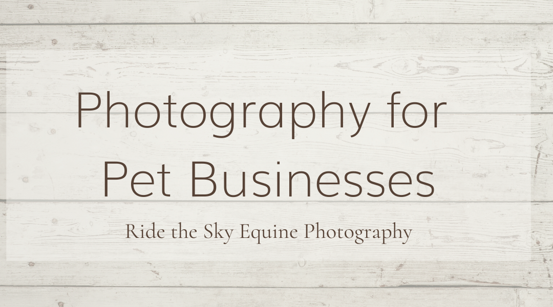 Photography for Pet Businesses