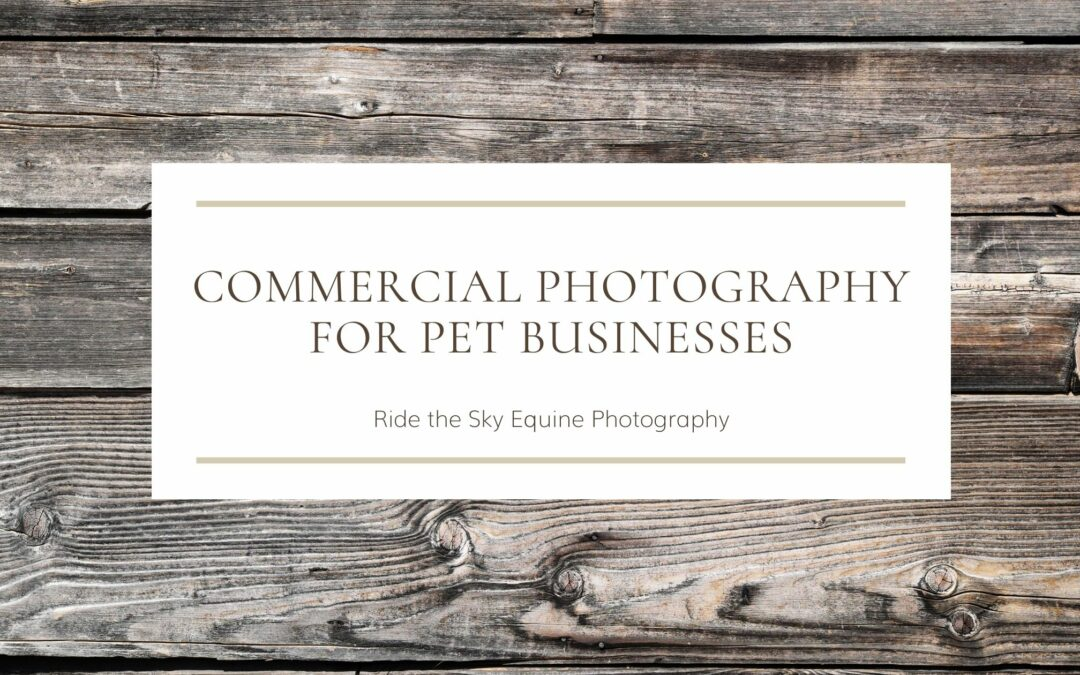 Commercial Photography for Pet Businesses