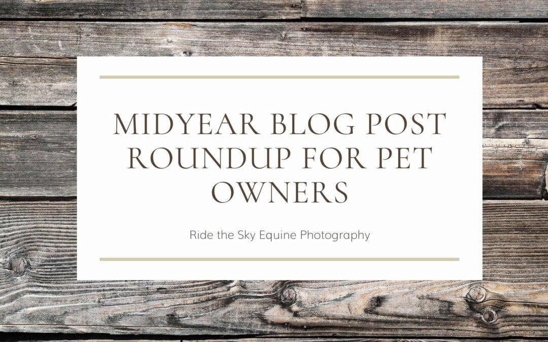 Midyear Blog Post Roundup for Pet Owners