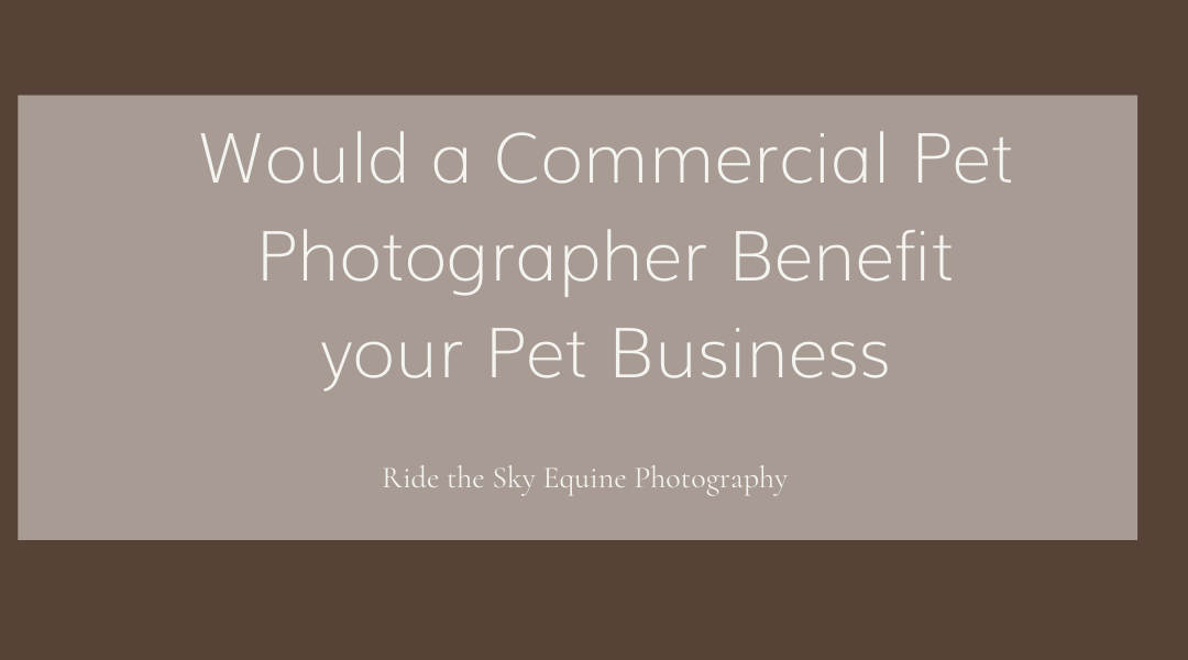 Would a Commercial Pet Photographer Benefit your Pet Business