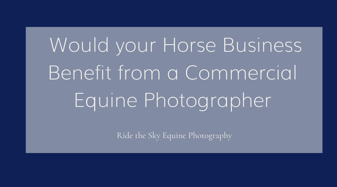 Would your Horse Business Benefit from a Commercial Equine Photographer