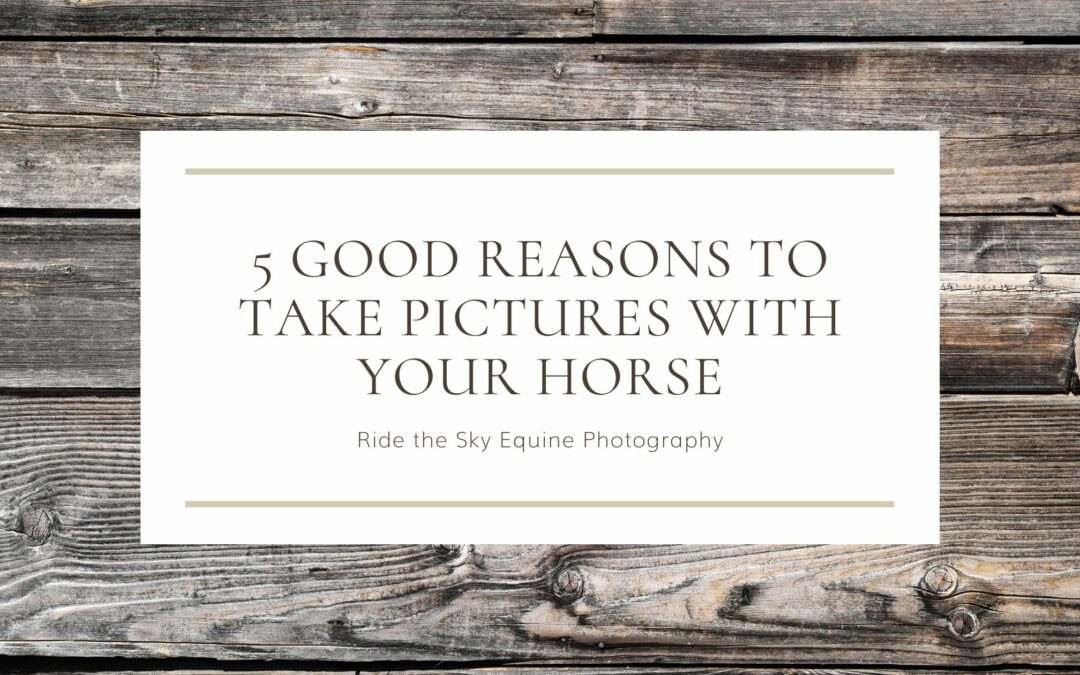 5 Good Reasons to Take Pictures with your Horse