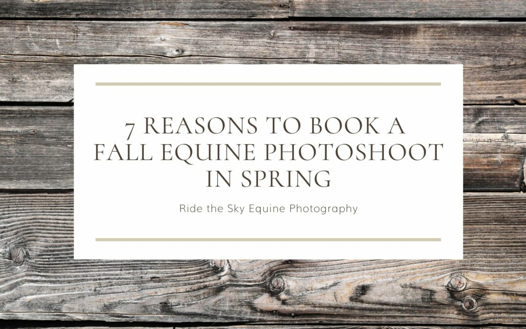 7 Reasons to book a fall equine photoshoot in the spring