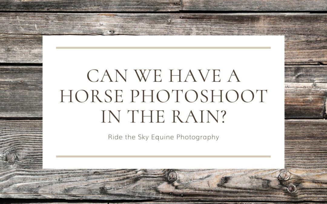 Can we have a horse photoshoot in the rain?