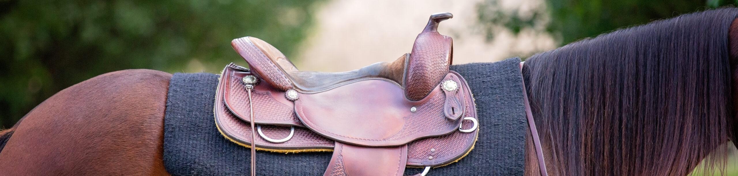 Western Saddle Image
