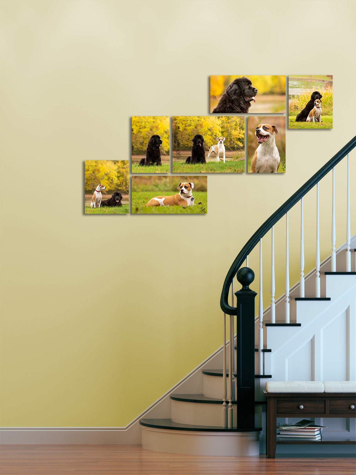 Collection of Pet Portraits on Stairs Wall