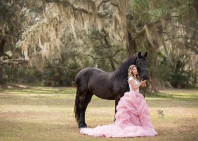 Woman with Friesian Mare in Field next to tree with Spanish moss