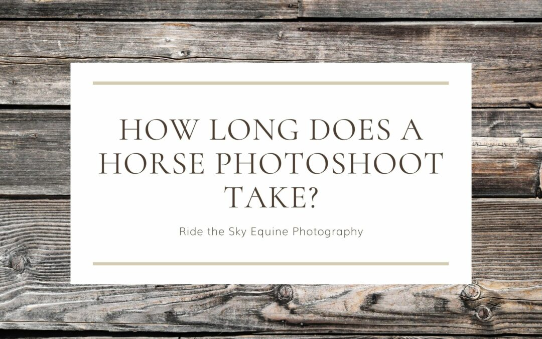 How Long does a Horse Photoshoot Take?