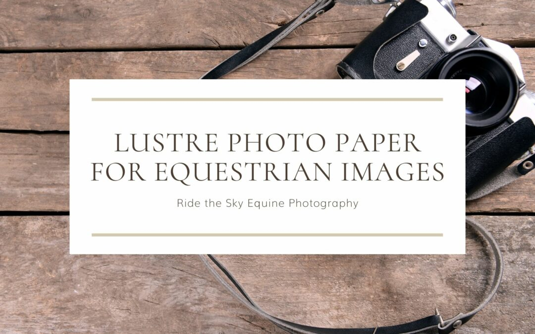 Using Lustre Photo Paper for Equestrian Images