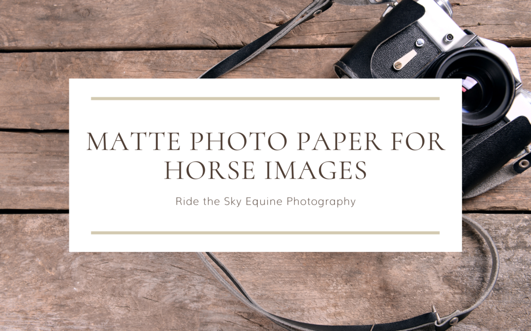 Using Matte Photography Paper for Horse Images