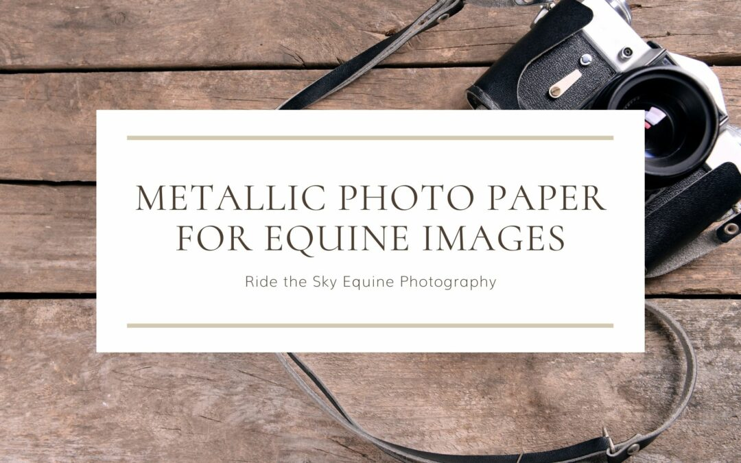 Using Metallic Photo Paper for Equine Images