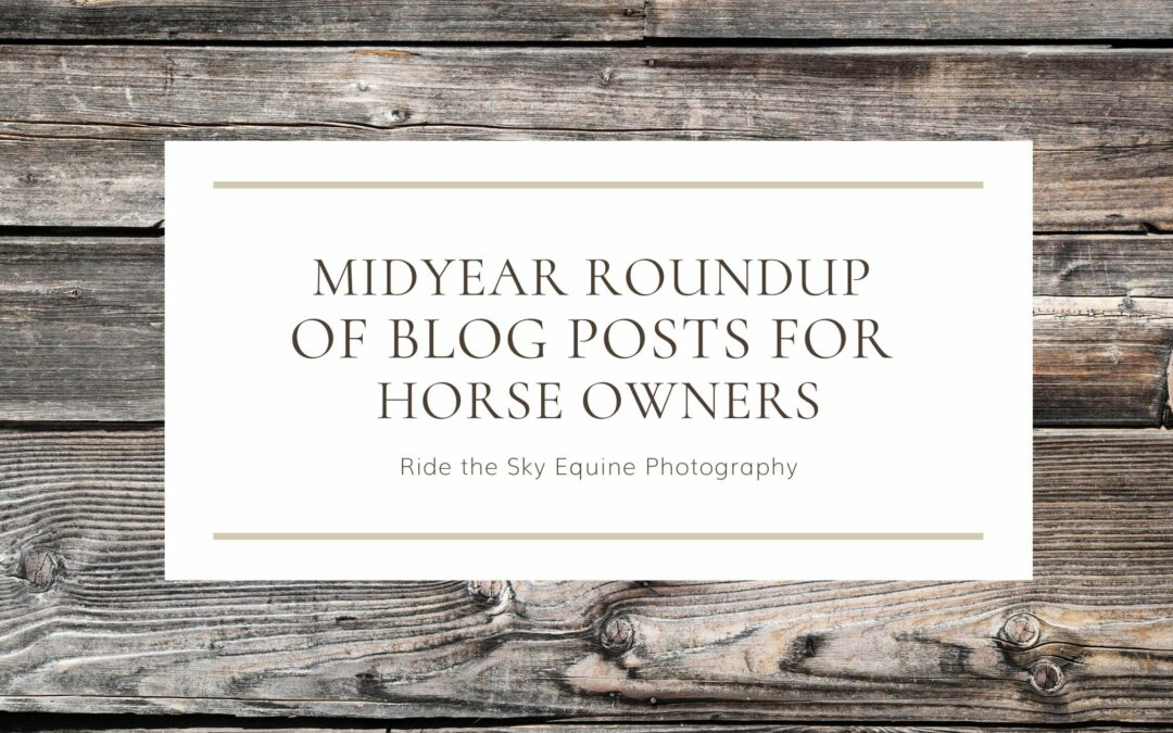 Midyear Roundup for Horse Owners
