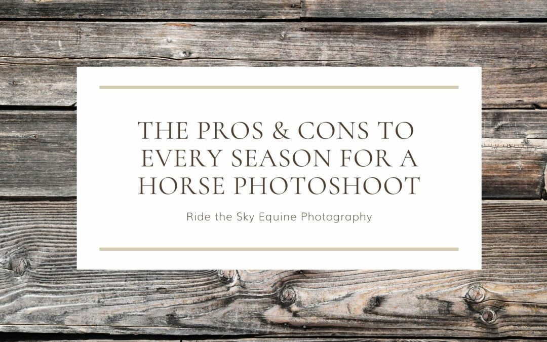 Pros & Cons to Every Season for a Horse Photoshoot