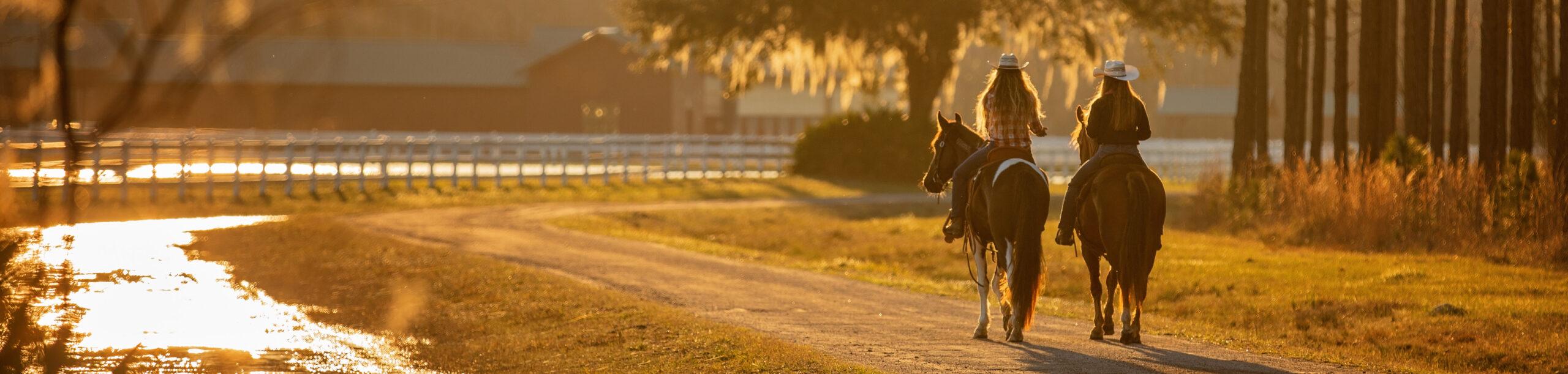 Girls riding mustang horses at sunset