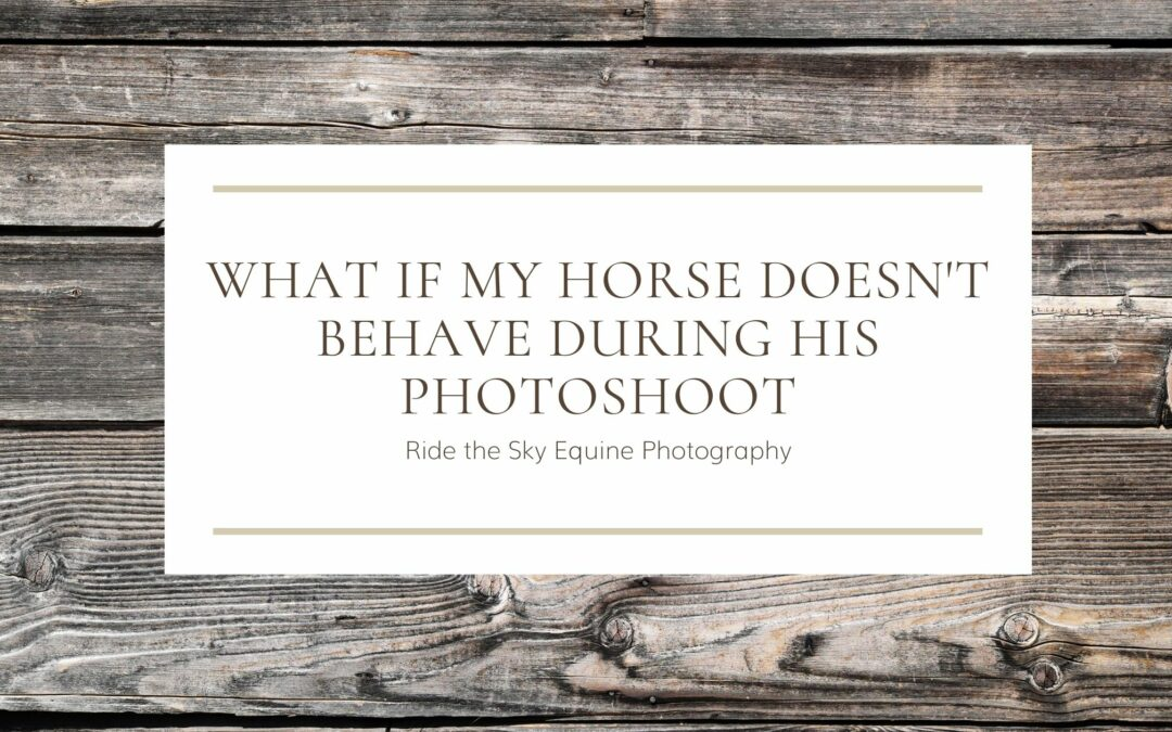 What if my horse doesn't behave during his photoshoot?