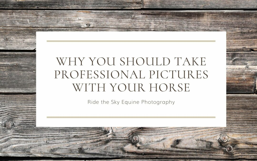 Why you should take professional pictures with your horse