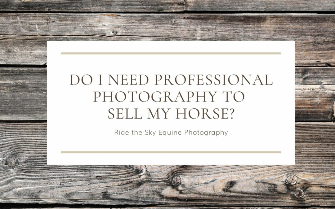 Do I need professional photography to sell my horse
