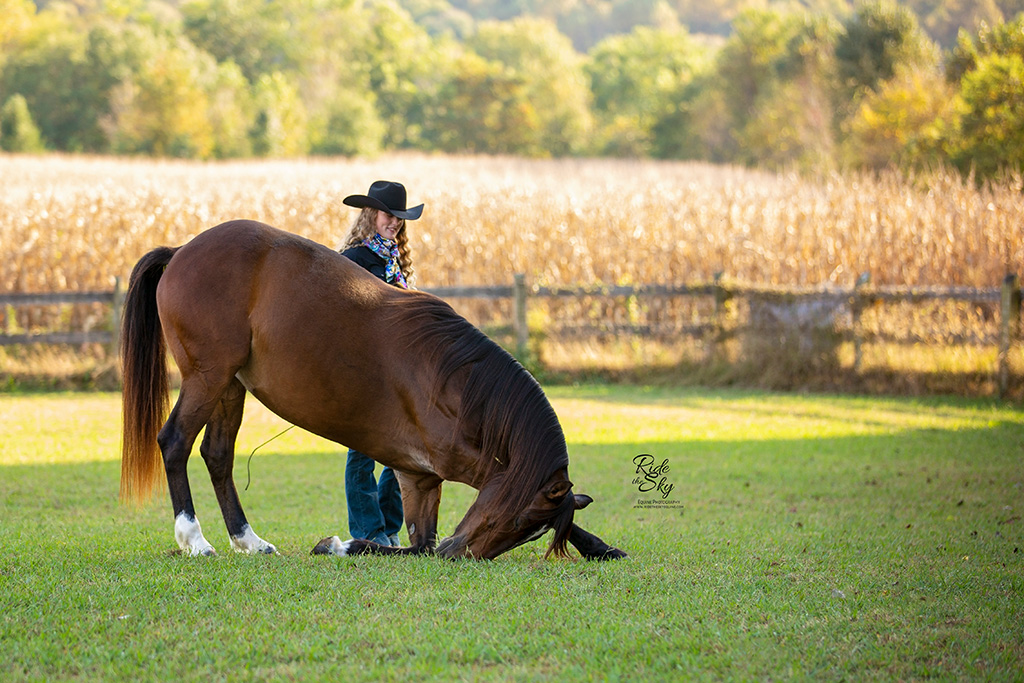 Horse Bowing with her trainer AR Horsemanship
